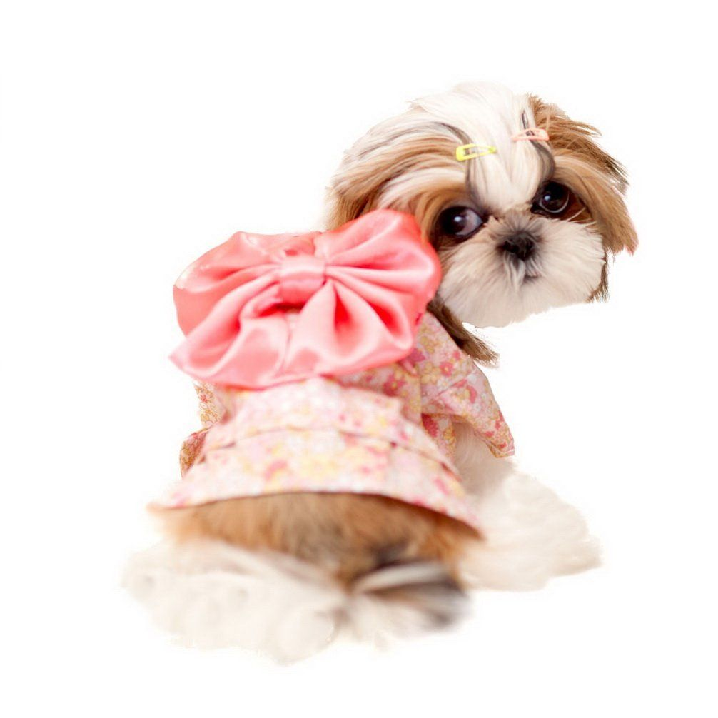 Ranphy Small Dog Clothes For Female Dog Kimono Costume Floral