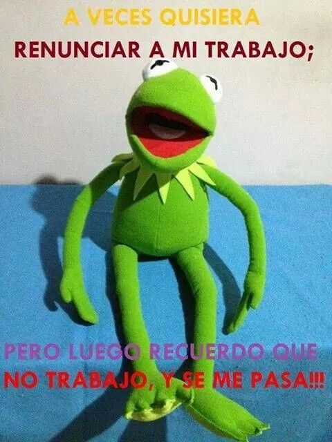 6a0310d370eda24157066f464eef5c7f Jpg 480 640 Humor Funny Memes Funny Quotes