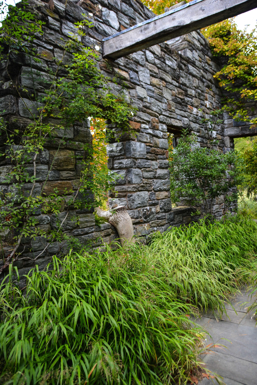 Chanticleer Garden, Hakonechloa Macra, 7 Essential Ornamental Grasses,  Thinking Outside The Boxwood