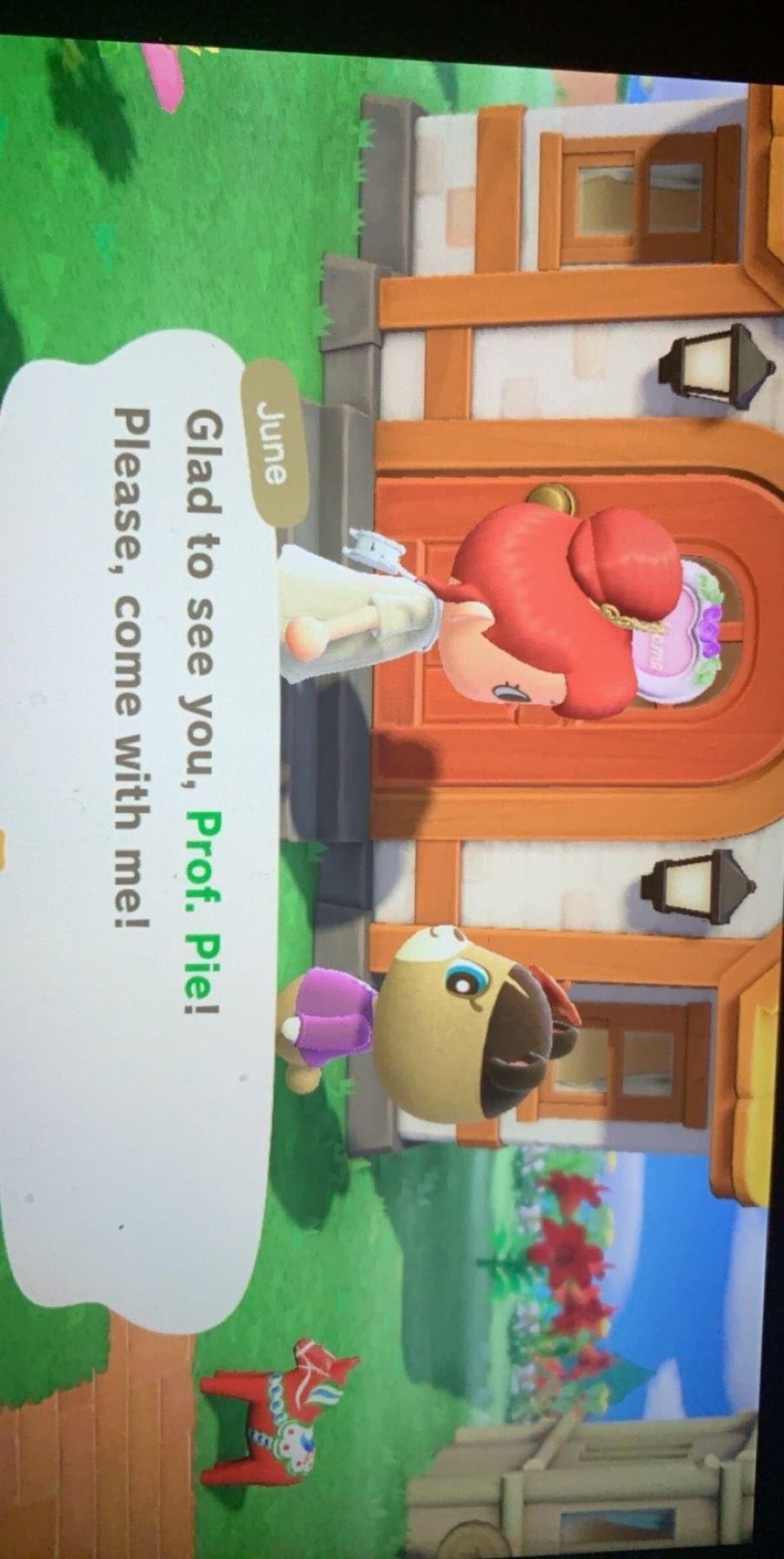 16+ Eloise animal crossing new horizons images