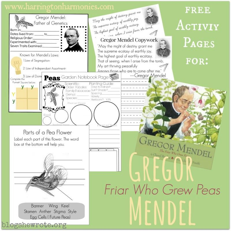 Gregor Mendel Page 2 By Sithdragon42 On Deviantart Patterns Of Inheritance Gregor Mendel Genetics Activities Teaching Biology