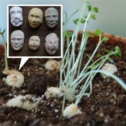 Seed Faces by Kelsey Pike. Little molded paper faces filled with sprout seeds ~ soak in water, place on top of soil, and poof... creepy sprouts