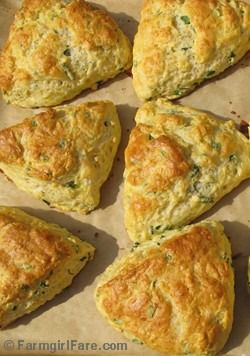 Savory Chive and Sharp Cheddar Cheese Scones - This recipe will make any dinner more delicious | Farmgirl Fare