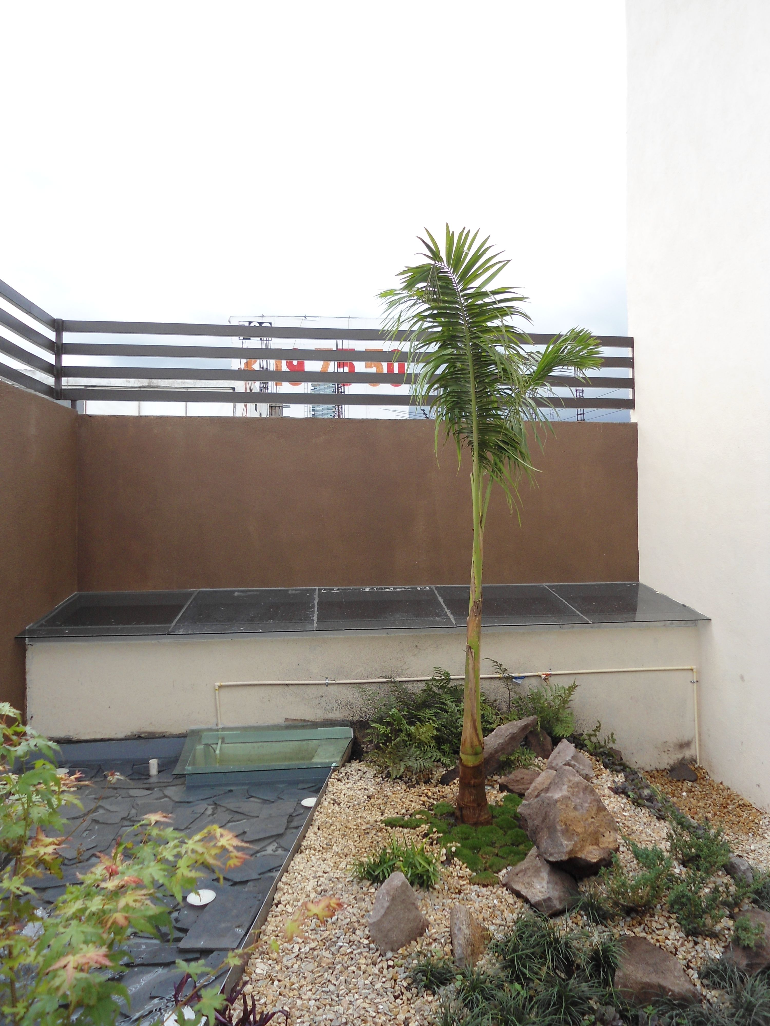 Un peque o Roof GArden trabajo con dise o de jardin con riego por