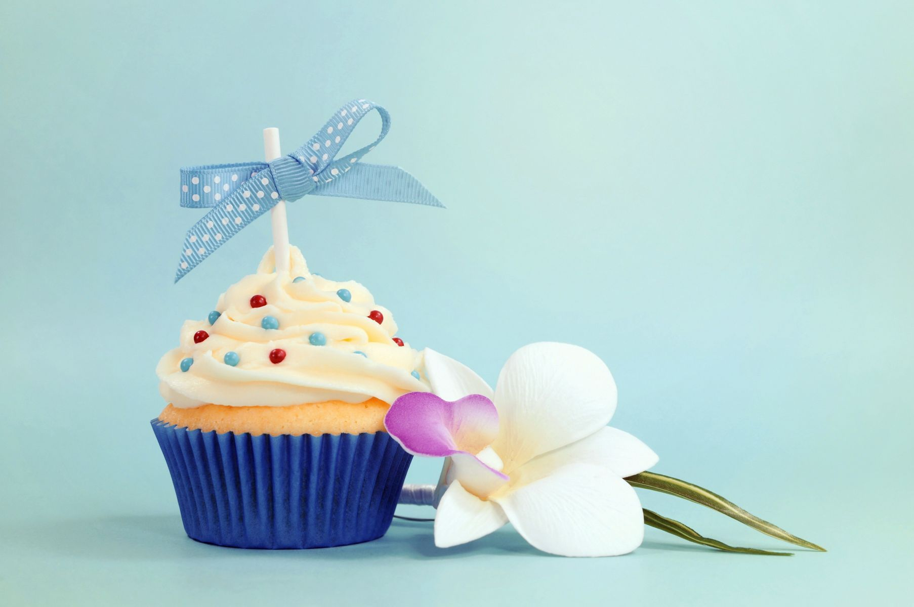 Hd wallpaper birthday - Image Result For Happy Birthday Hd Wallpaper 1920x1080 Png