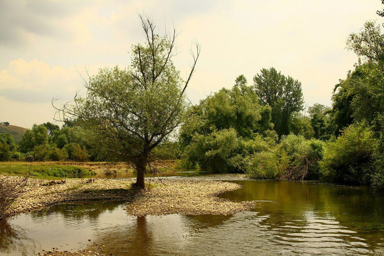 Reka Nera