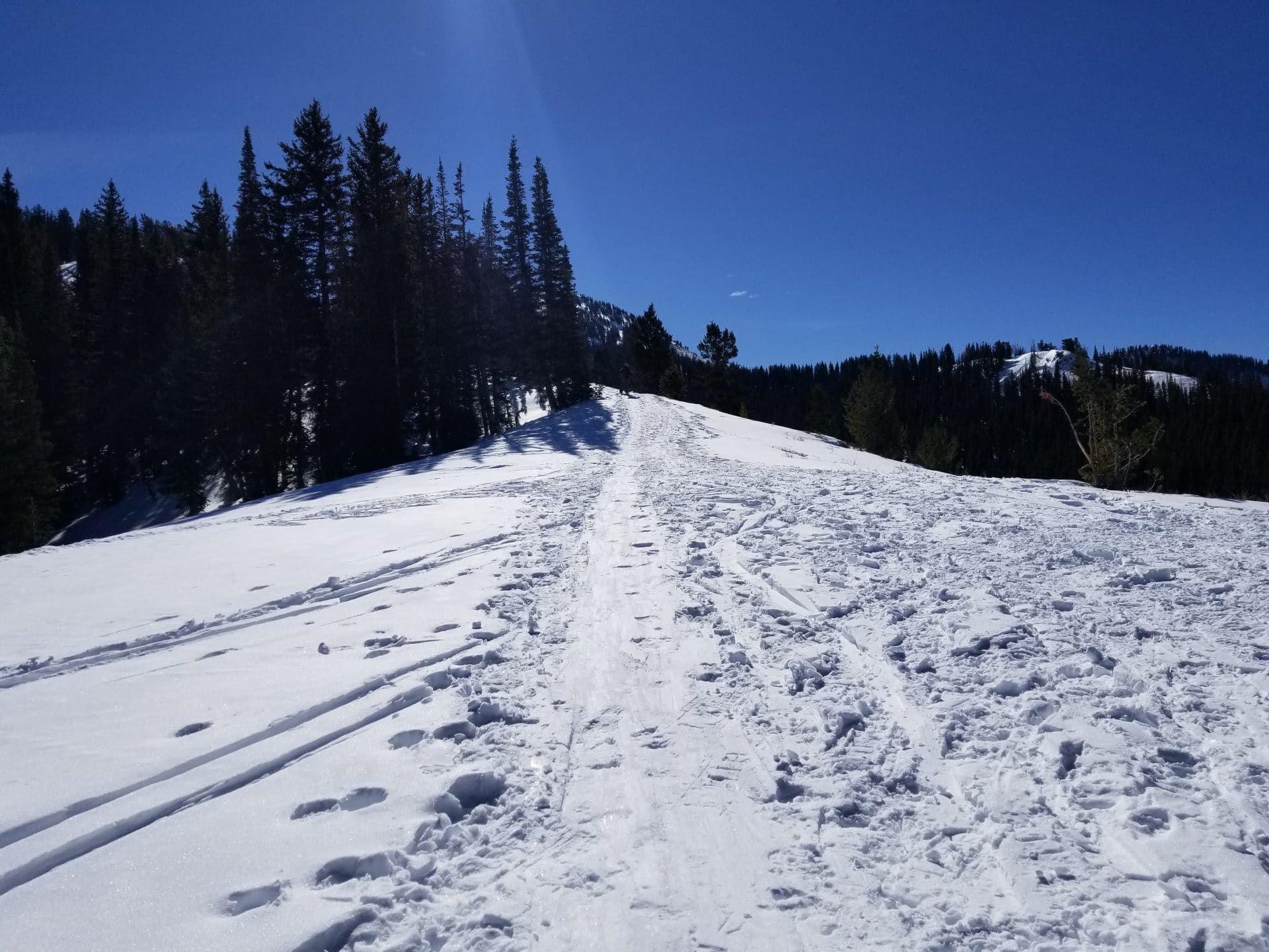 Backcountry Skiing At Guardsman Pass Keith And Lindsey Backcountry Skiing Skiing Backcountry