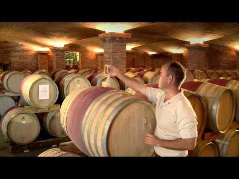 La Motte Franschhoek South Africa Wine Winelands Med Billeder