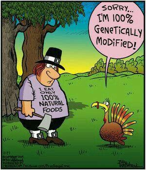 30 Funny Turkey Jokes In Pictures #turkey #jokes #humor #thanksgiving  #funny | Thanksgiving cartoon, Thanksgiving jokes, Holiday jokes