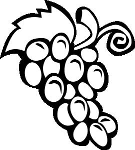 grape vine clip art vector clip art online royalty free public rh pinterest com au grape vine clip art images grapevine clipart free