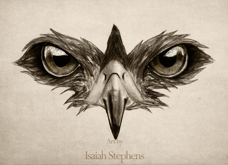 Hawk Eye By Isaiahstephens On Deviantart Tattoo2 Pinterest