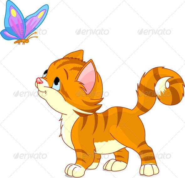 Kitten Looking To Butterfly Kitten Cartoon Cartoon Cat Kitten Images