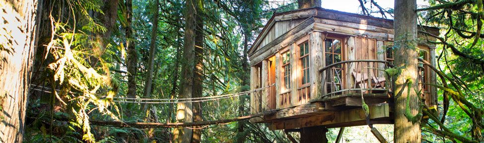 Treehouse Point Outside Seattle Is A Treehouse Hotel Venue