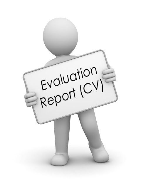 In-depth CV Evaluation Report Interview-winning professional CV - evaluation report