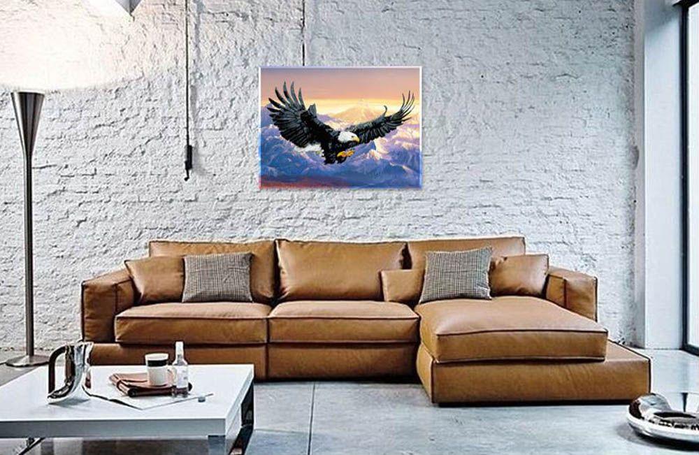Картина по номерам «Белоголовый орлан» | Белоголовый орлан ...