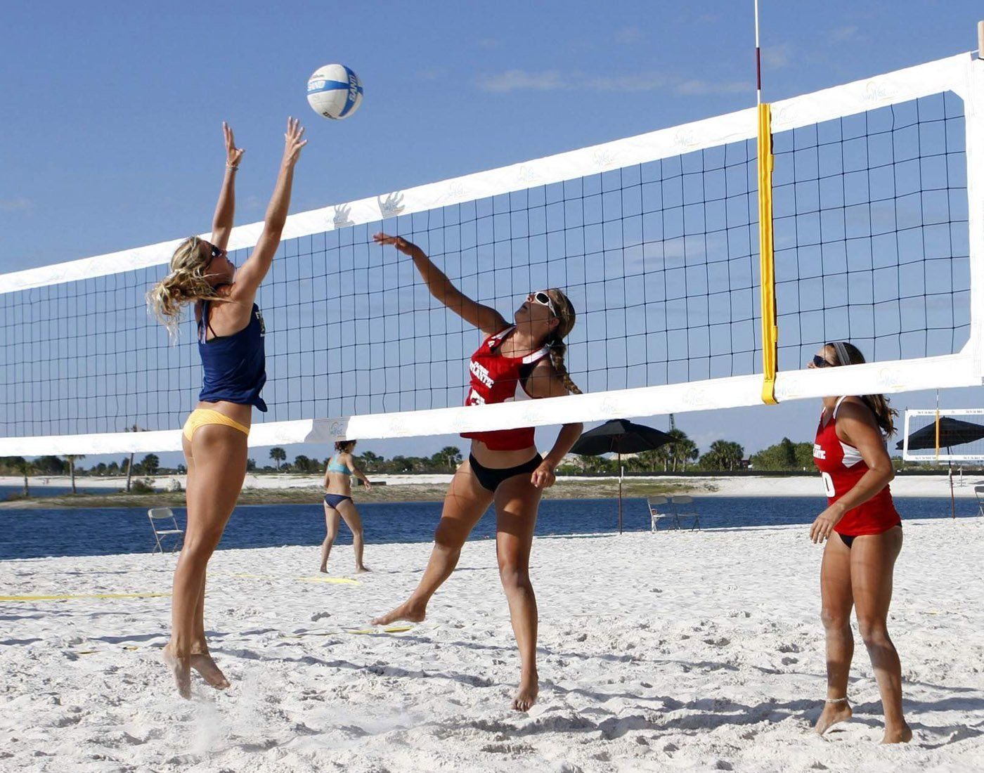 A Brief Description Of Beach Volleyball To Let You Know The Basic Rules Of Beach Volleyball How T Volleyball Photos Beach Volleyball Beach Volleyball Pictures