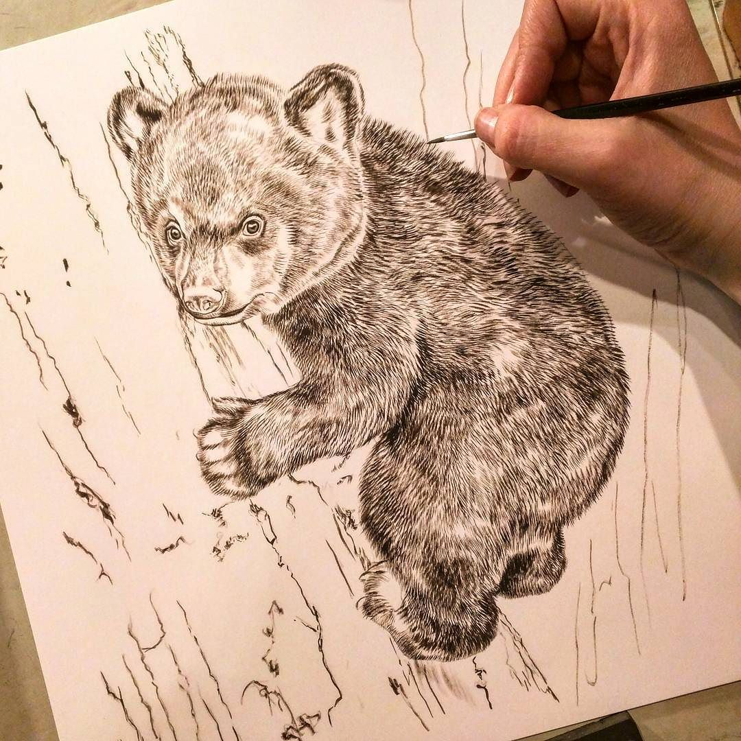 682ccb4b7e4 A new black bear cub painting - unwinding from recent travels with some fur  texture today - Tree Hugger Black Bear Cub sepia watercolor underpainting  on ...