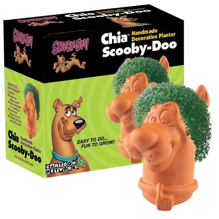 Chia Scooby Doo Chia Pet Best Birthday Gifts Birthday Fun