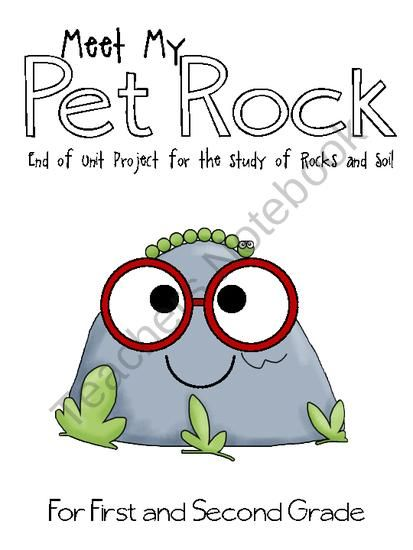 Rock and soil day meet my pet rock from elementary nerd for Soil 2nd grade