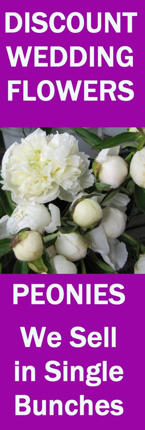 Whole Wedding Flowers In Single Bunches Learn How To Make Bridal Bouquets Groom