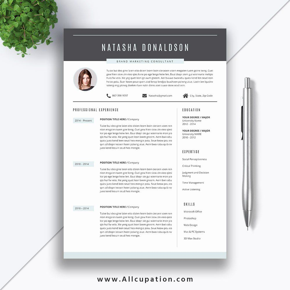 Best Resume Templates Word Beautiful 2019 Professional