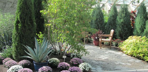 Foellinger-Freimann Botanical Conservatory (Fort Wayne) | Ideas For ...