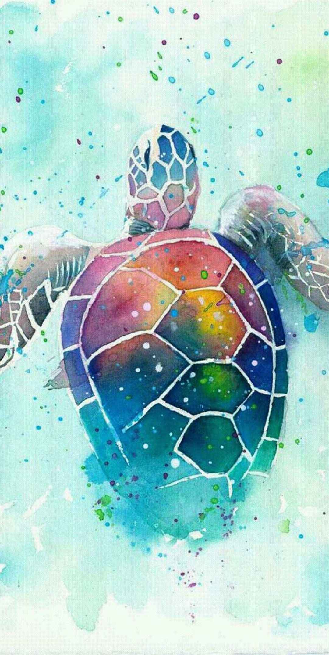 Turtle Turtle Watercolor Turtle Painting Turtle Art