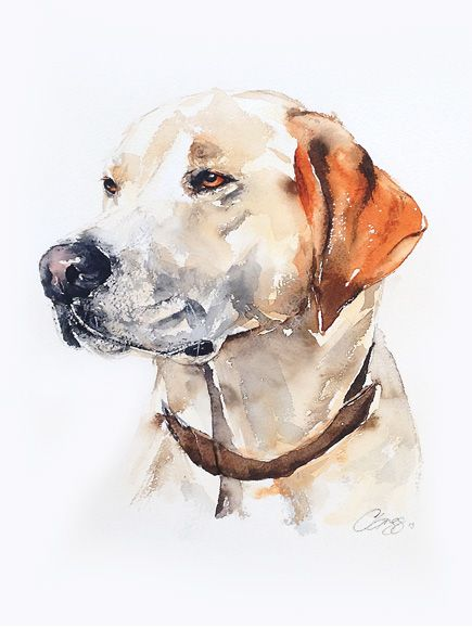 Custom Pet Portrait In Watercolour Dog Paintings Cat Painting