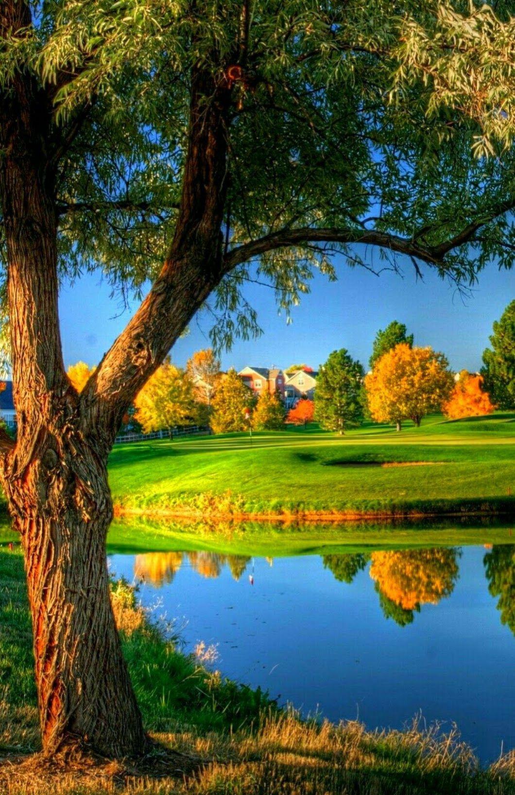 Good Morning Happy Day Amito Chang Google Nature Photography Beautiful Nature Wallpaper Autumn Landscape