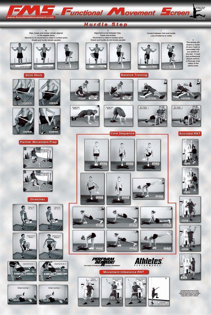 Functional fitness training tool kit pdf