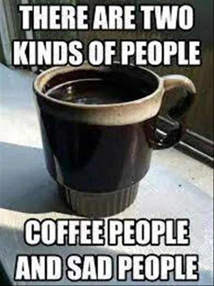 Click Here For More Funny Pictures 5 Funny Pictures Of Today Funnymemes Funnypictures Funnyanimals Funny L Coffee Obsession Coffee Lover Coffee Addict