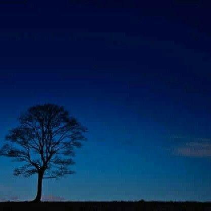 La sera, come tutte le sere, venne la sera. Non c'è niente da fare: quella è una cosa che non guarda in faccia nessuno. Succede e basta. Non importa che razza di giorno arriva a spegnere. Magari è stato un giorno eccezionale, ma non cambia nulla. Arriva e lo spegne. #magariungiorno La sera, come tutte le sere, venne la sera. Non c'è niente da fare: quella è una cosa che non guarda in faccia nessuno. Succede e basta. Non importa che razza di giorno arriva a spegnere. Magari è stato un g #magariungiorno