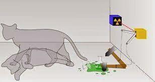 COMPLEJO CULTURAL GALATRO: El gato de Schrödinger... ¿vivo o muerto?