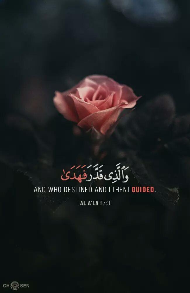 عن ابن عباس أن رسول الل ه صلى الل ه عليه وسلم كان إذا قرأ سبح اسم ربك الأعلى قال سبحان رب Quran Quotes Verses Beautiful Quran Quotes Quran Quotes