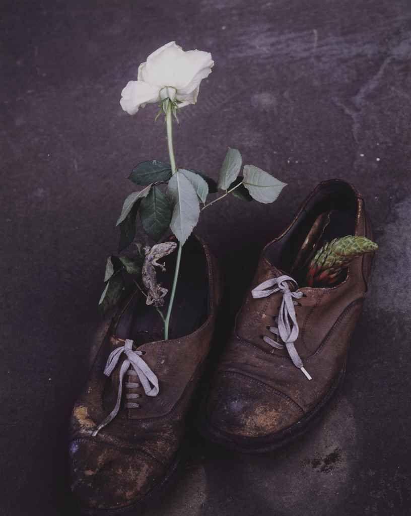 Nobuyoshi Araki, Sensual Flower, 1997. (via firsttimeuser)