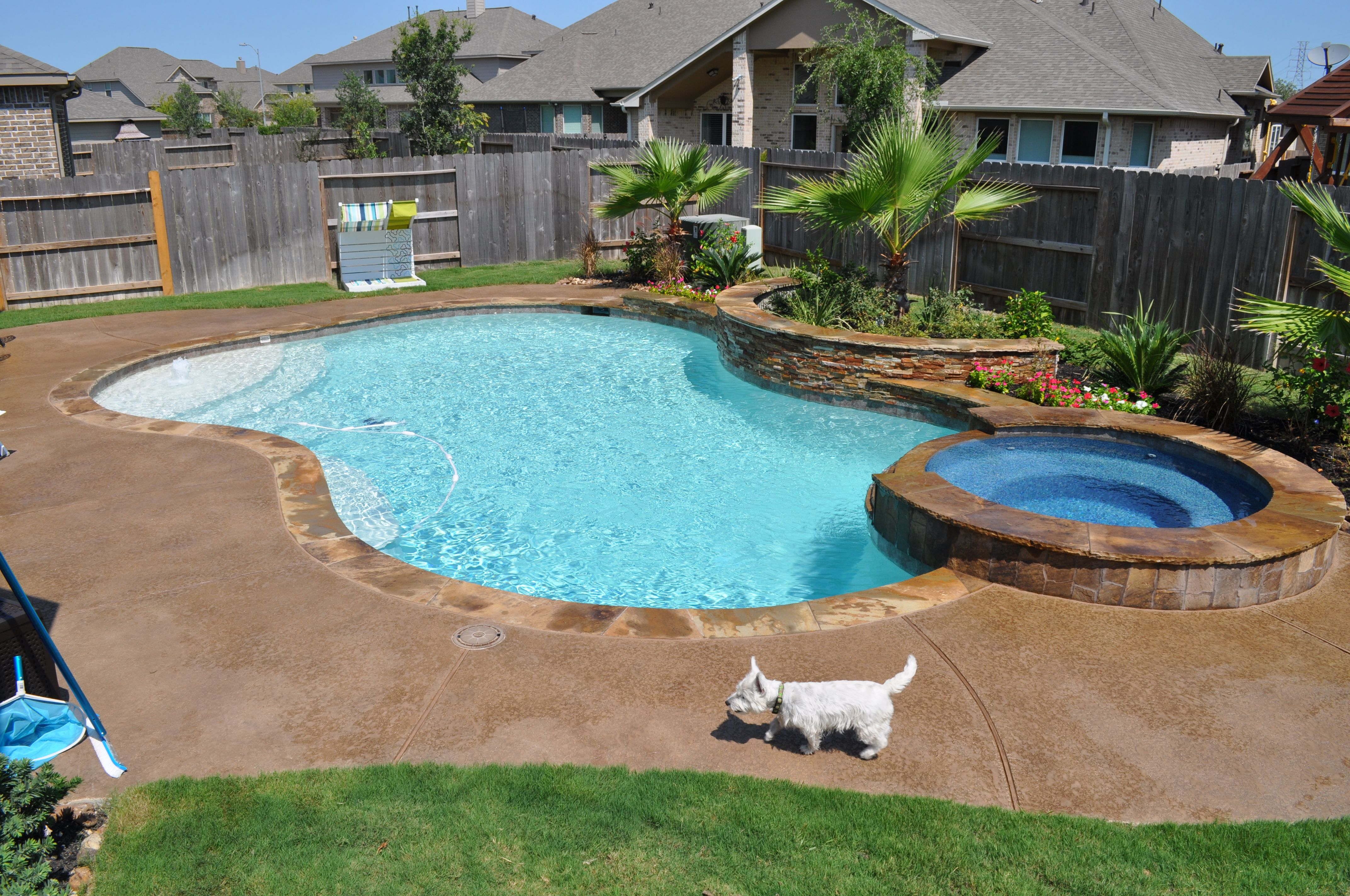 Free form swimming pool and spa in katy tx houston tx features raised spa tiered flagstone for Swimming pool builders katy tx