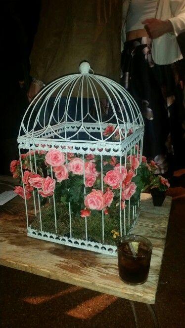 Gabbia con Rose rosa