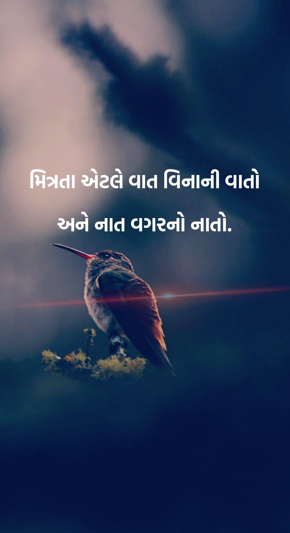 gujratiquotes #gujjuquotes #true #quotes #gujju #gujarat #surat