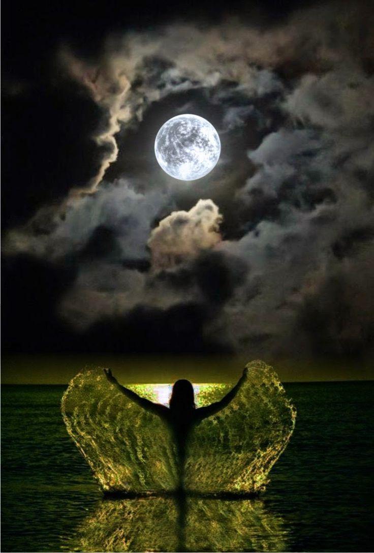 Pin by Sunny Daze on Good Morning / Good Night | Moonlight ...