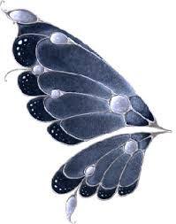 """Résultat de recherche d'images pour """"ailes de papillon"""""""