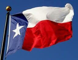 Texas Flag Waving Texas Flags Texas Education Texas History