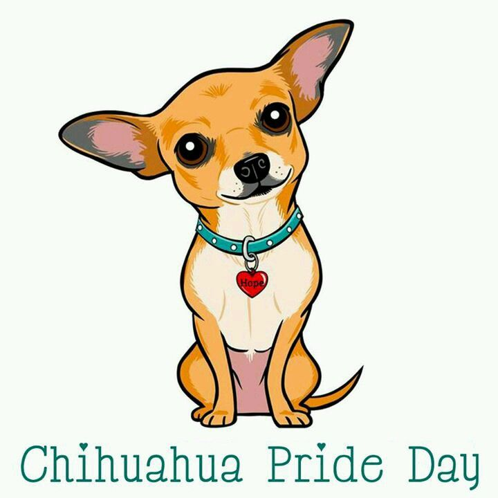 Everyday At My House Cute Cartoon Animals Chihuahua Drawing