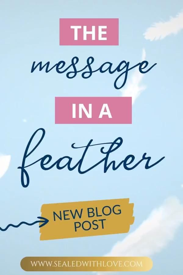 Spiritual Message in a Feather | Sealed With Love
