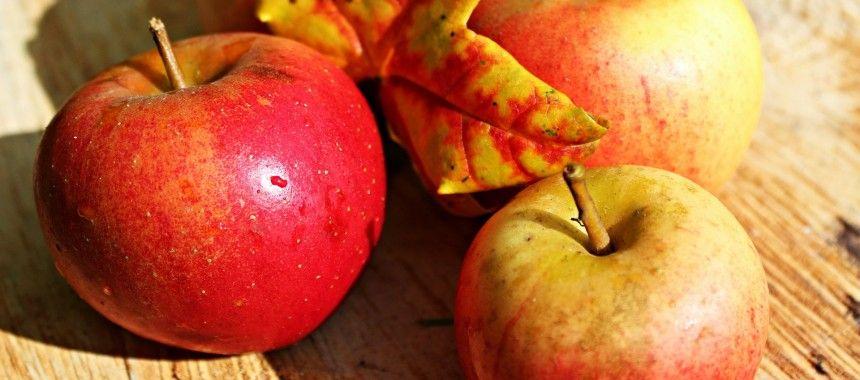 Croustade de pommes à l'érable – Dessert facile