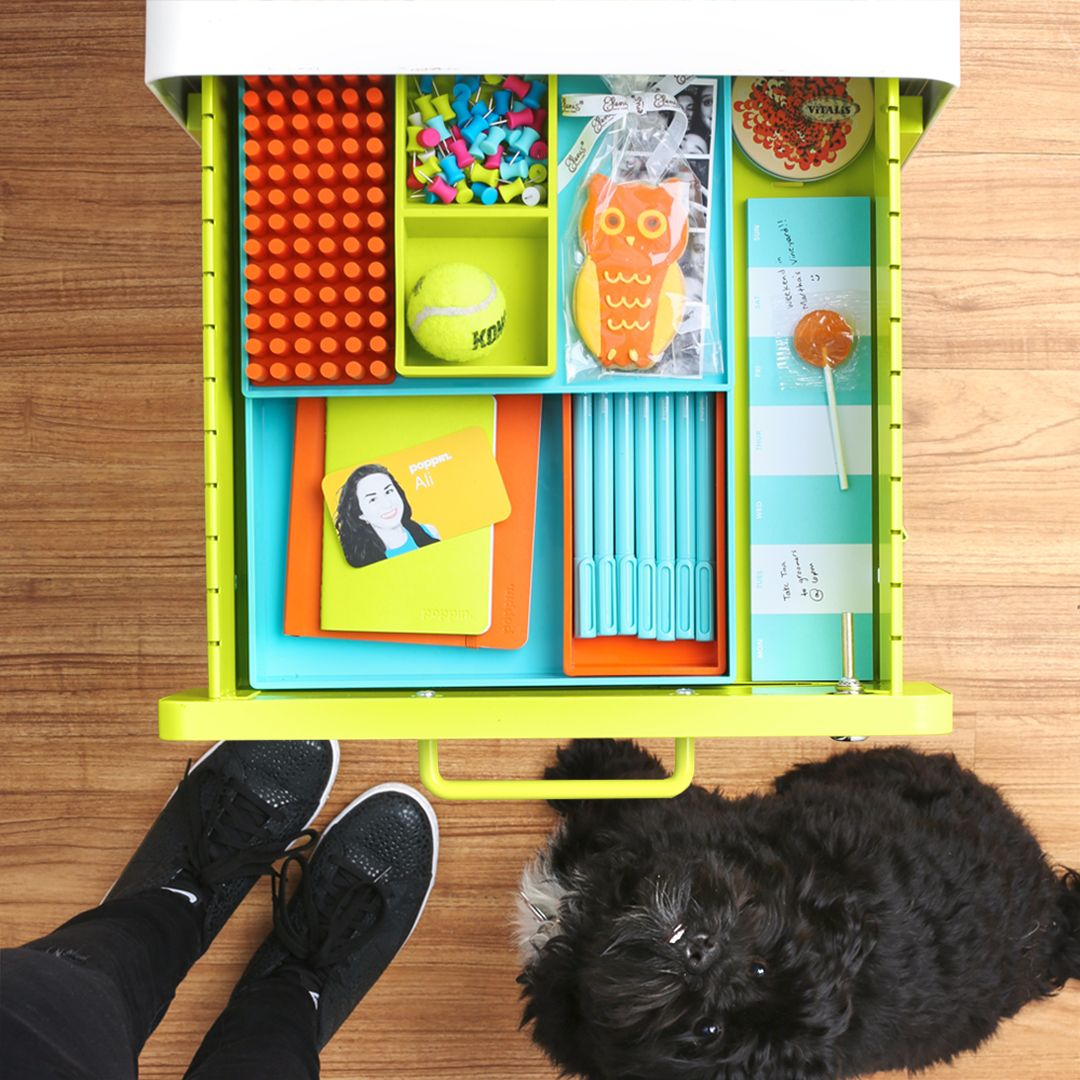 Poppin Workstylist Ali Keeps Her File Cabinet Stuffed With Treats And Toys  For Herself And Tina