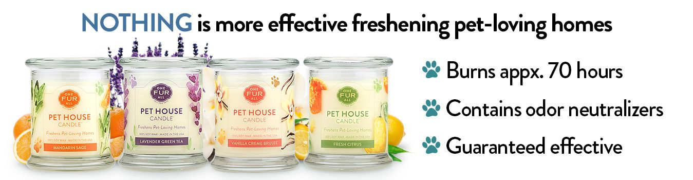 Angel Of Hope Is Doing A Pet House Candle Fundraiser Pet House Candles Are Specially Designed To Freshen Pet Lovin Home Candles Candle Fundraiser Animal House
