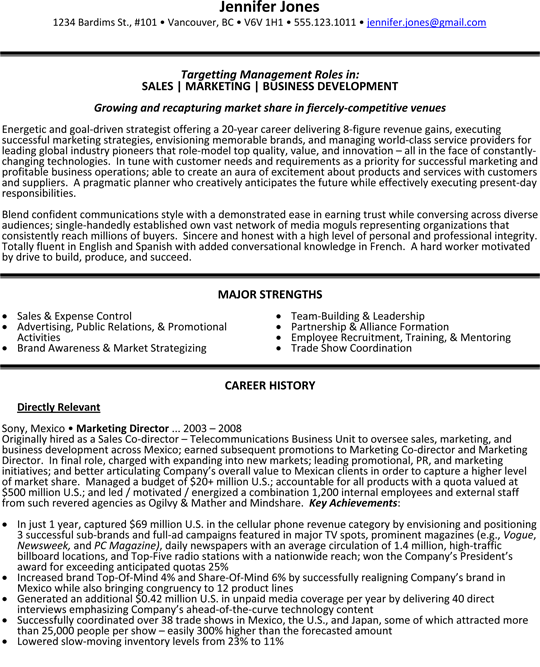 Sales, Marketing And Business Development Director Resume Sample