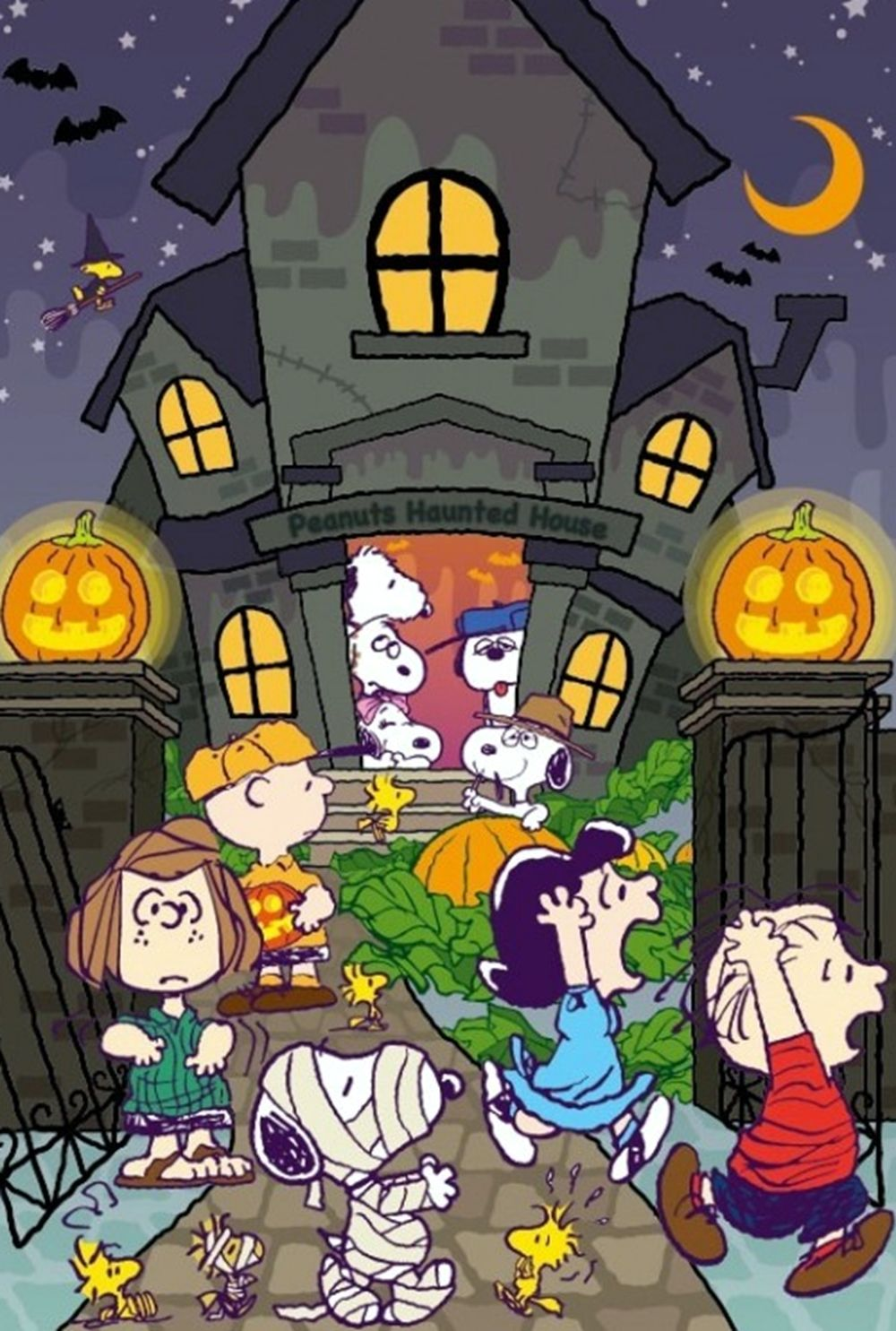 Peanuts halloween charlie brown snoopy snoopy - Snoopy halloween images ...