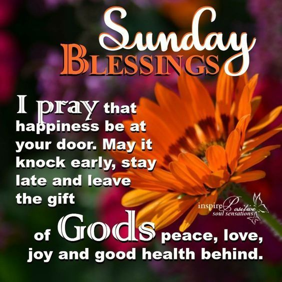 Happy Sunday I Hope You Have A Wonderful And Blessed Day Newday