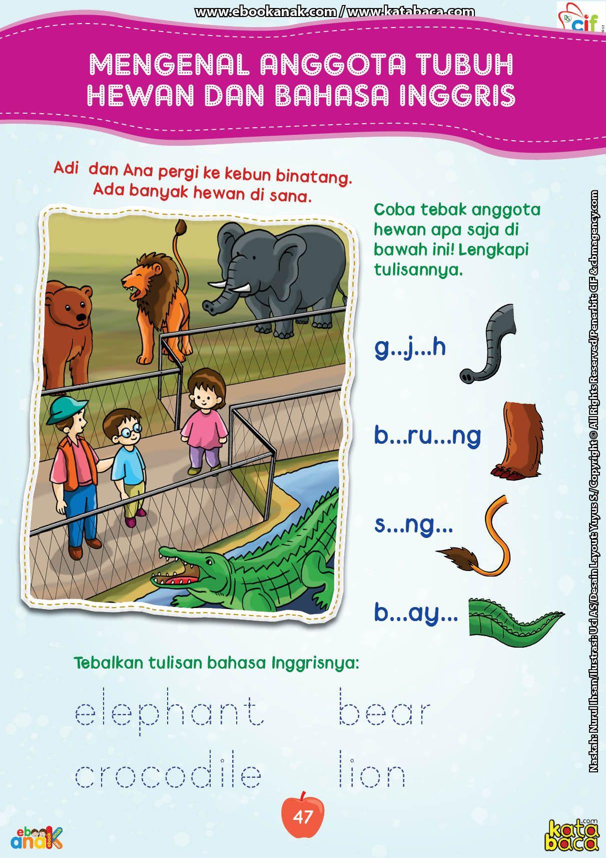 Mengenal Anggota Tubuh Hewan Dalam Bahasa Inggris Hewan Tubuh Buku Pelajaran